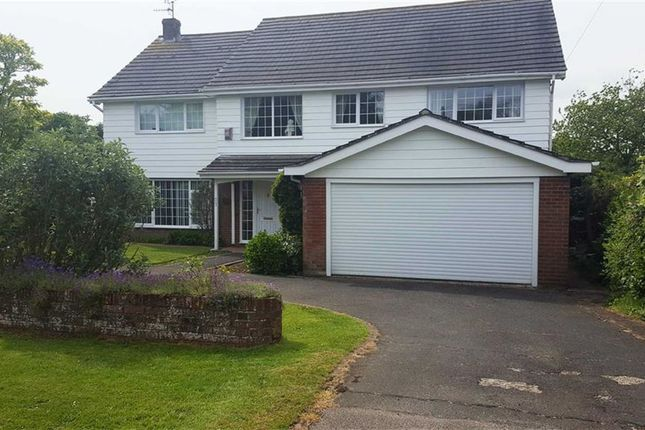 Thumbnail Detached house for sale in Parkwood Road, Hastings, East Sussex
