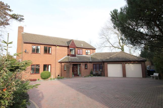 Thumbnail Property for sale in Ashby Park, Daventry