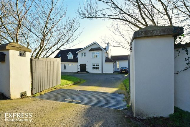 Thumbnail Detached house for sale in Lisboy Road, Downpatrick, County Down