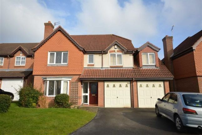Thumbnail Detached house to rent in Tawny Way, Littleover, Derby