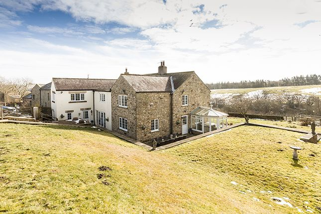 Thumbnail Farmhouse for sale in West Steel, Whitfield, Hexham, Northumberland