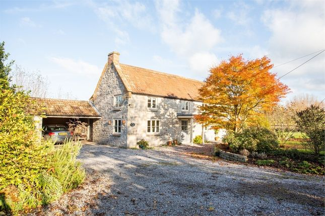 Thumbnail Detached house for sale in Church Lane, Long Load, Langport, Somerset