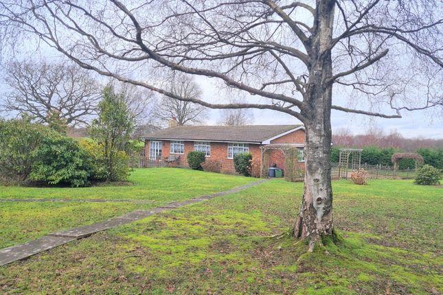 Thumbnail Bungalow for sale in Rose Cottage Farm, Birchwood Lane, Knockholt, Sevenoaks, Kent