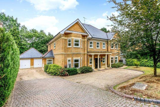Thumbnail Detached house to rent in Alpine Close, Hancocks Mount, Ascot, Berkshire