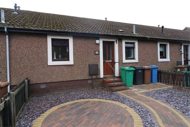 Thumbnail Terraced bungalow for sale in South Grove, Methil