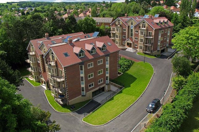 Thumbnail Flat for sale in 7 Braemore, Ecclesall Road South, Sheffield