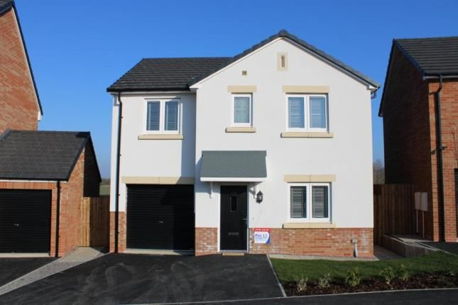 Thumbnail Detached house for sale in The Limes, Coxhoe, Durham