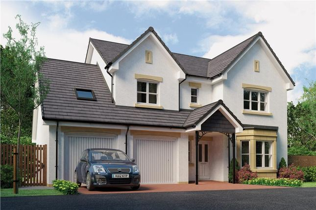 "Thumbnail Detached house for sale in ""Humber"" at Monifieth"