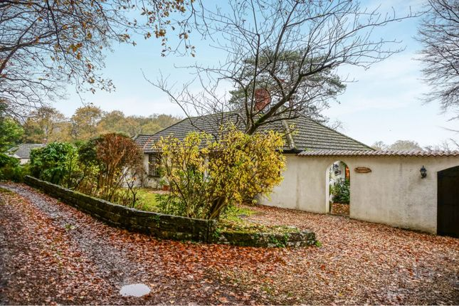 Thumbnail Detached bungalow for sale in Green Bottom, Wimborne