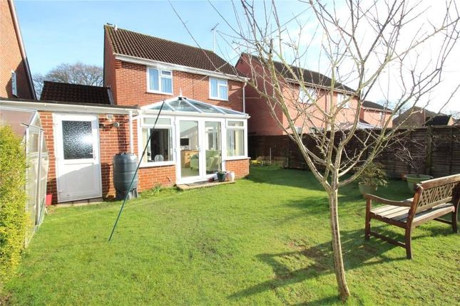 Thumbnail Detached house for sale in Cypress Avenue, Highdown Copse, Worthing