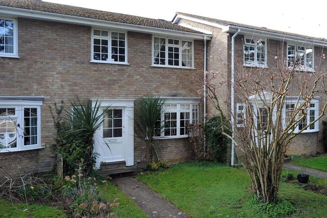 Thumbnail Terraced house to rent in Clement Court, Maidstone