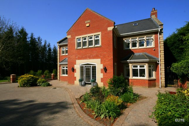Detached house for sale in Waldridge, Chester Le Street
