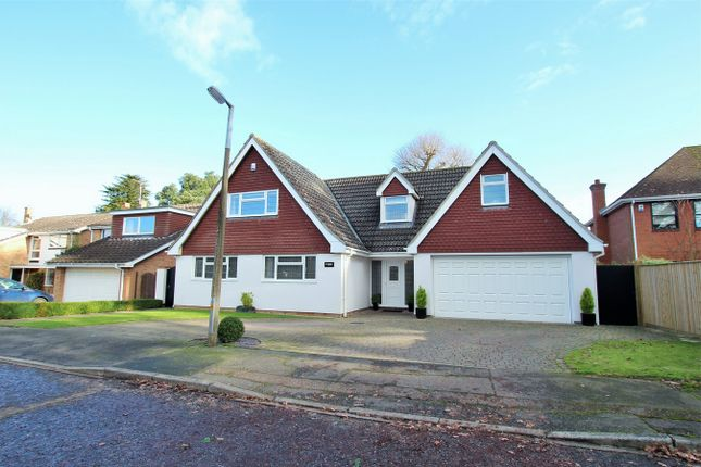 Thumbnail Detached house for sale in Lexden Grove, Colchester, Essex