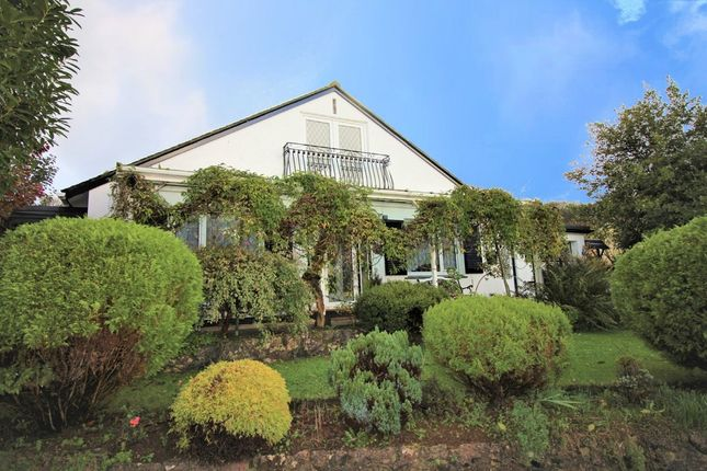 Thumbnail Detached bungalow to rent in Sycamore Close, Paignton