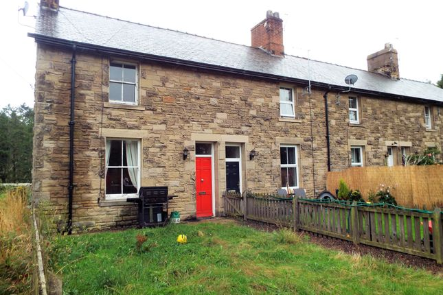 Thumbnail End terrace house to rent in Station Cottages, Whittingham, Alnwick