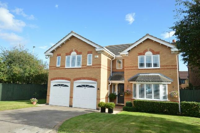 Thumbnail Detached house for sale in Wakeling Close, Whetstone, Leicester