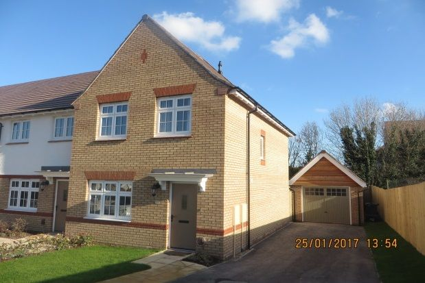Thumbnail Property to rent in Foxglove Close, Newton Abbot