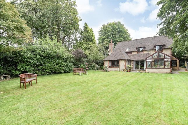 Thumbnail Detached house for sale in High Street, Broadwindsor, Beaminster, Dorset