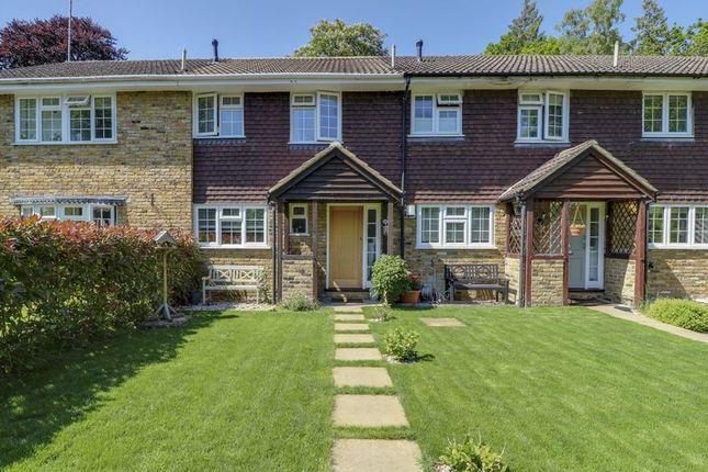 Thumbnail Terraced house for sale in Newark Road, Windlesham