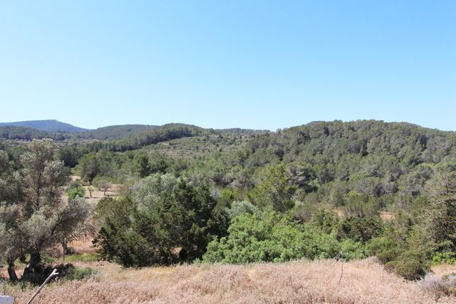 Thumbnail Finca for sale in Benimussa, Sant Josep De Sa Talaia, Ibiza, Balearic Islands, Spain