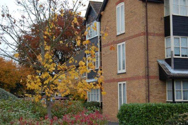 Studio to rent in Monks Crescent, Addlestone KT15