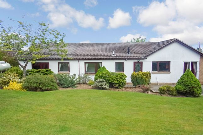 Thumbnail Bungalow for sale in Kenmore Road, Swarland, Morpeth