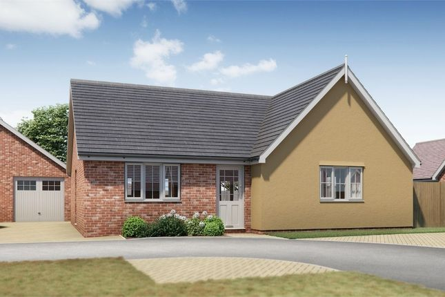 Thumbnail Detached bungalow for sale in Plot 18 Springfield Meadows, Little Clacton, Essex