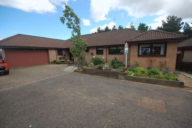 Thumbnail Bungalow for sale in Beechwood Park, Livingston