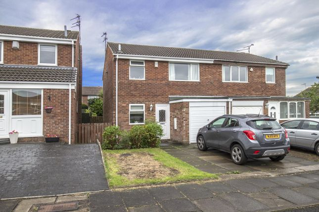 Thumbnail Property to rent in Velville Court, Newcastle Upon Tyne