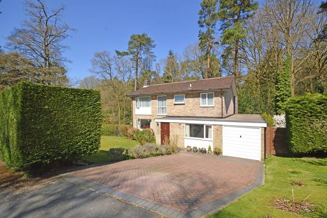 Thumbnail Detached house for sale in Rozeldene, Hindhead