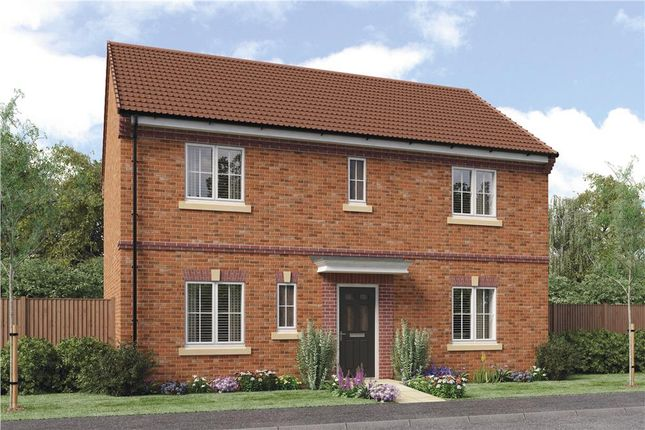 "Thumbnail Detached house for sale in ""Stevenson B"" at Sophia Drive, Great Sankey, Warrington"