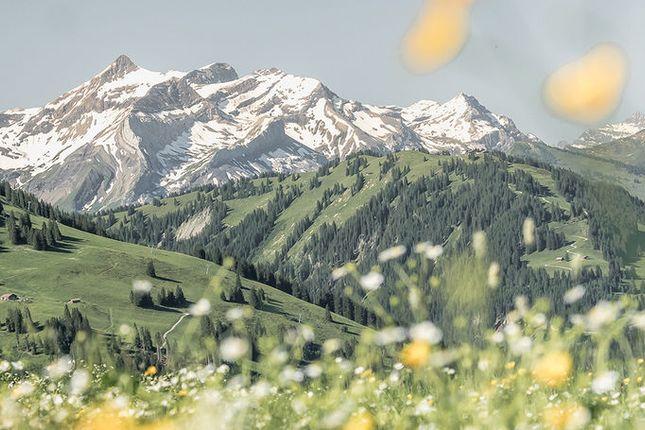 Photo of Schoenried, Gstaad, Bern
