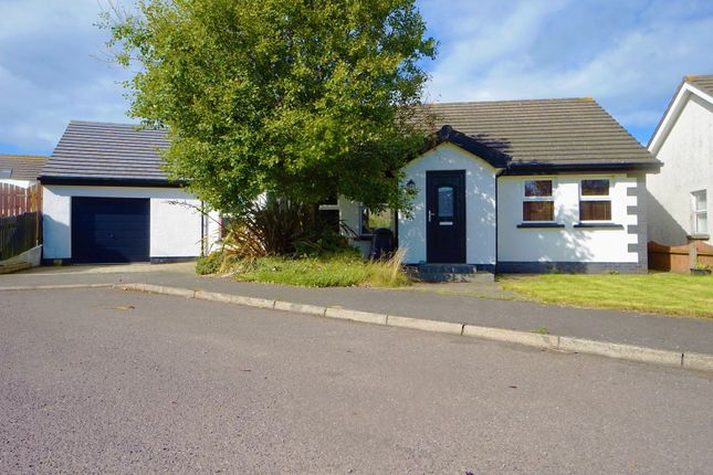 Thumbnail Detached bungalow for sale in Saltwater Close, Ballywalter
