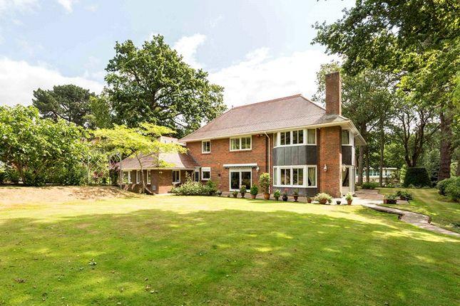 Thumbnail Detached house for sale in The Avenue, Branksome Park, Poole, Dorset