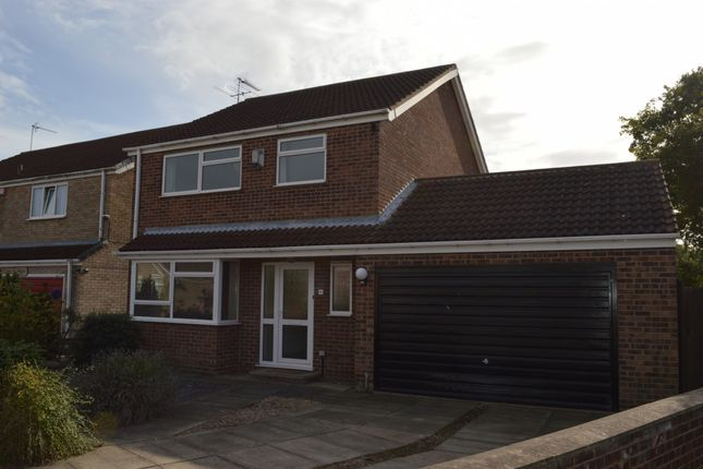 Thumbnail Detached house to rent in Tardrew Close, Beverley, Beverley