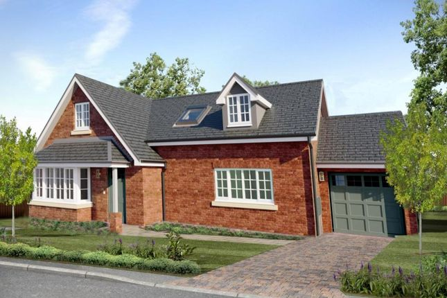 Thumbnail Detached bungalow for sale in Plot 44, Cae Topyn, Denbigh
