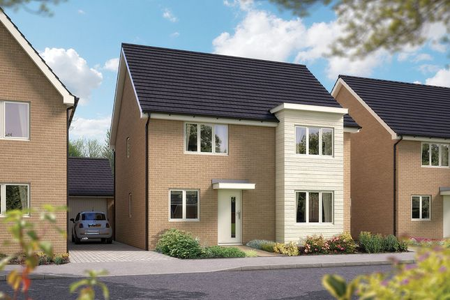 "Thumbnail Detached house for sale in ""The Canterbury"" at Toddington Lane, Wick, Littlehampton"