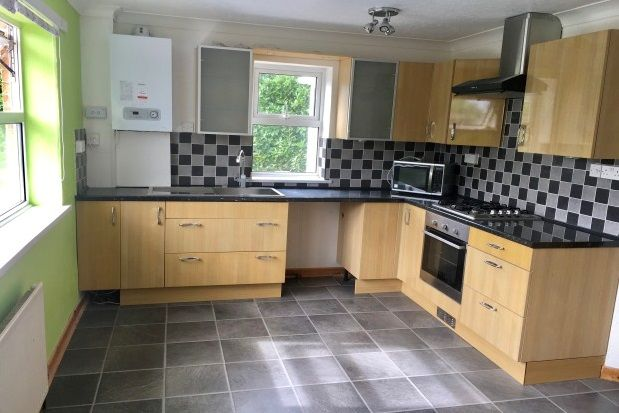 Thumbnail Property to rent in Ruckamore Road, Torquay