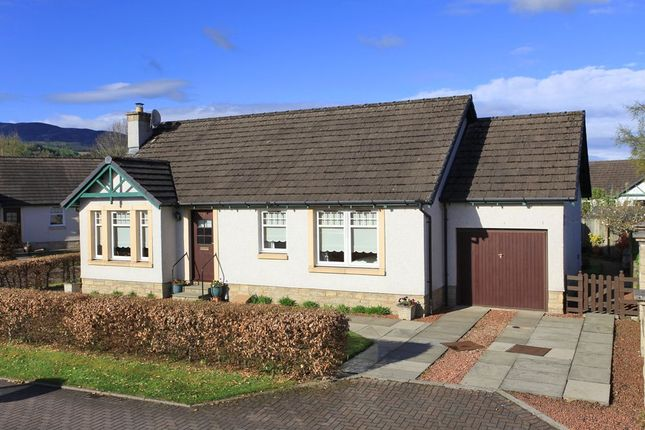 Thumbnail Bungalow for sale in Earnmuir Court, Comrie