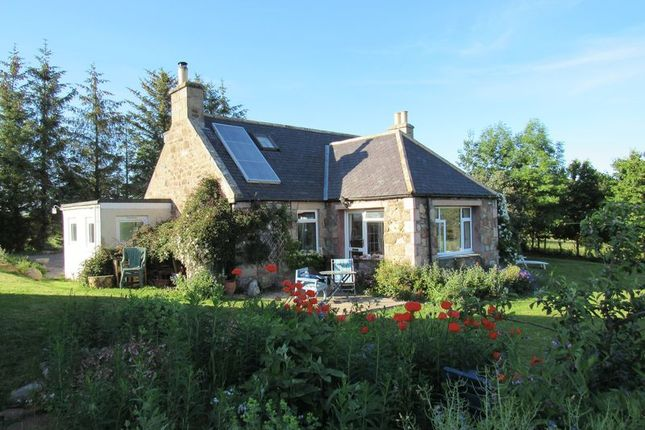 Thumbnail Property for sale in Nairn