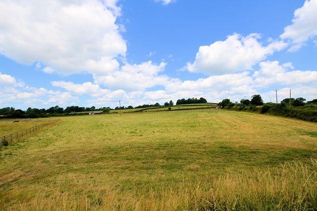 Paddock of Mill Hill Lane, Tavistock PL19