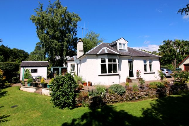 Thumbnail Detached bungalow for sale in Keay Street, Blairgowrie