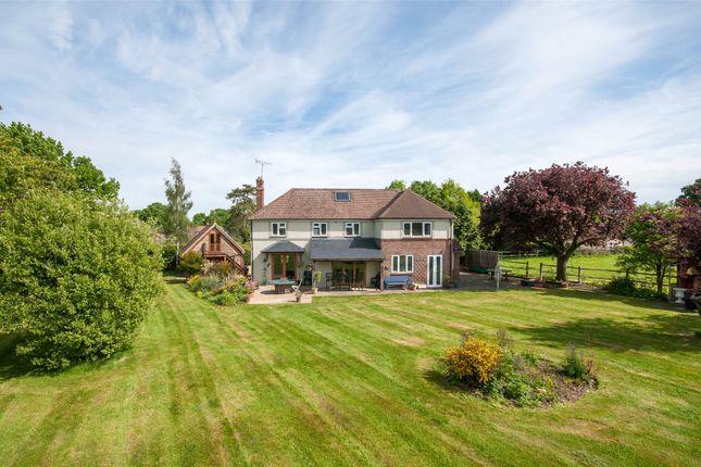 Thumbnail Detached house for sale in Vicarage Lane, Capel, Dorking, Surrey