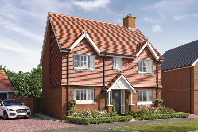 Thumbnail Detached house for sale in Hellingly Green, Hailsham, East Sussex