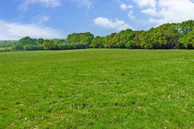 Thumbnail Land for sale in Kingsbank Lane, Beckley, Rye, East Sussex