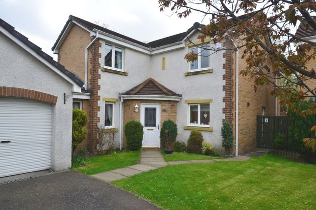 Thumbnail Detached house to rent in The Glen, Tullibody, Alloa