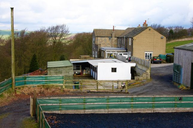 Thumbnail Detached house for sale in Thorngate, Ten Yards Lane, Thornton