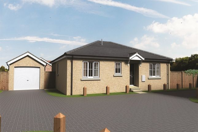 Thumbnail Detached bungalow for sale in Sewell Gardens, Old Catton, Norwich