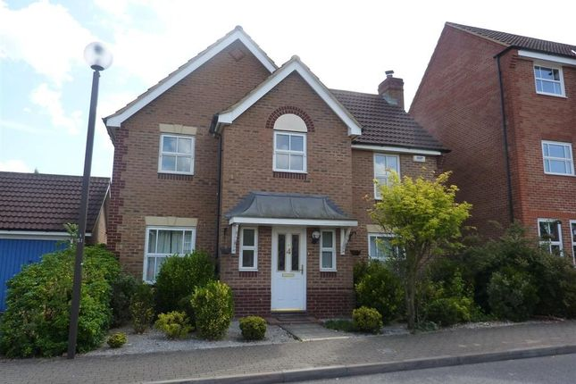 Thumbnail Detached house to rent in St. Ives Crescent, Tattenhoe, Milton Keynes