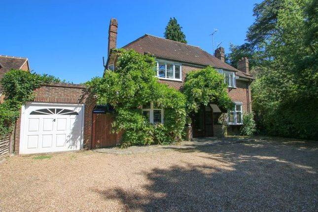 Thumbnail Detached house to rent in Boxgrove Road, Guildford